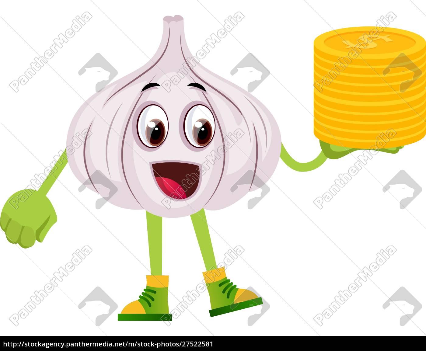 knoblauch, mit, münzen, illustration, vektor, auf, weißem, hintergrund. - 27522581