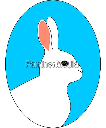 white rabbit illustration vector on white