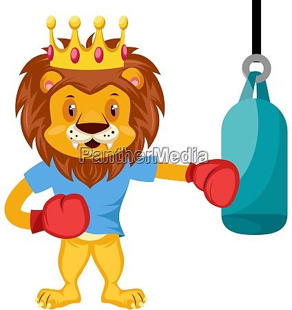 lion boxing illustration vector on white