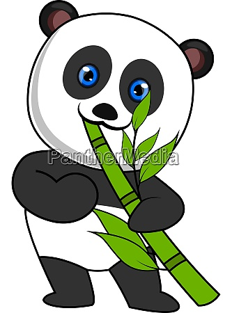 panda eating bamboo illustration vector on