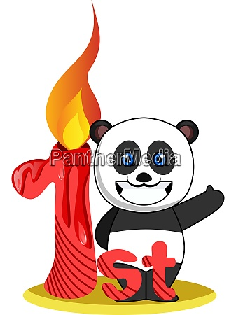 pandas first birthday illustration vector on
