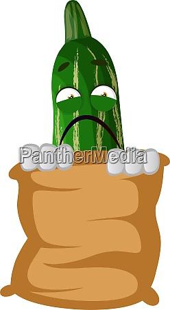 cucumber in bag illustration vector on