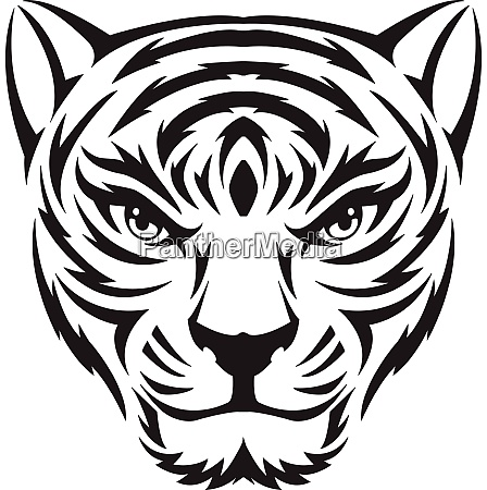 tiger gesicht tattoo vintage gravur
