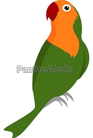 green parrot illustration vector on white