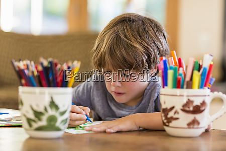 six year old boy drawing amoung