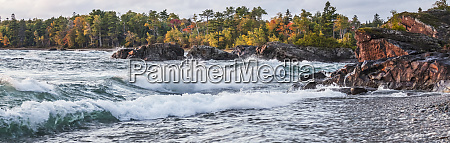 lake superior with a forest in