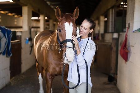 laechelnde huendin strocking pferd in stall