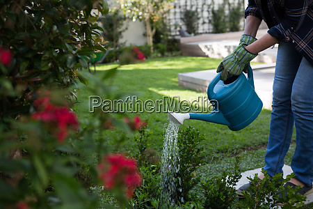 low section of woman watering plants