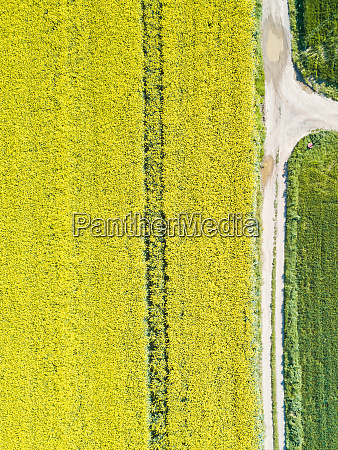 luftaufnahme der landstrasse die das landwirtschaftliche