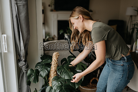 woman, caring, for, house, plants - 27626441