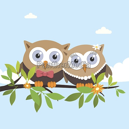 couple of owls on a spring