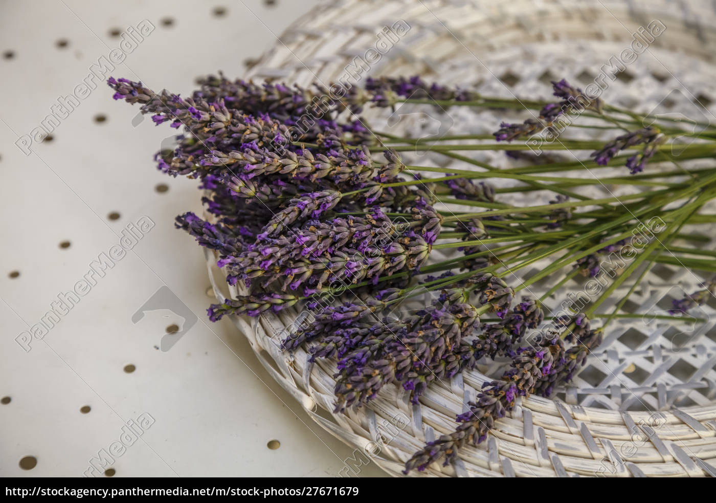 lavender, still, life, in, provence, south - 27671679