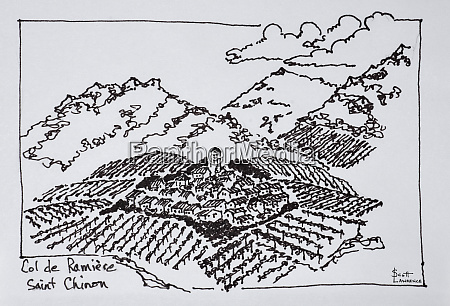 vineyards in the col de la