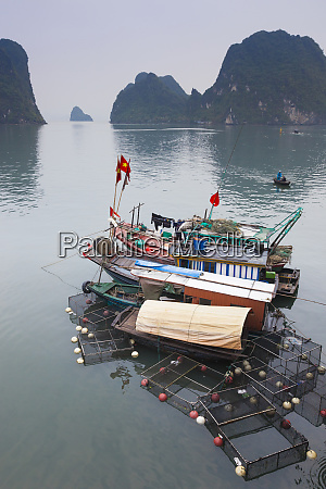 vietnam halong city halong bay fishing