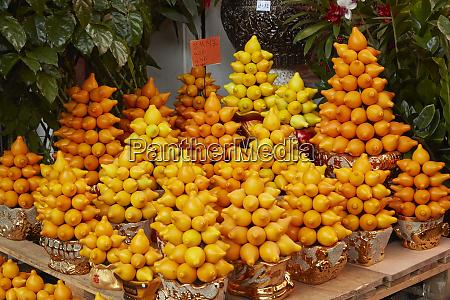 citrus displays hong kong flower market