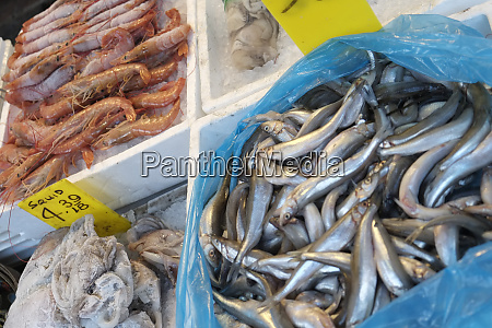seafood for sale at market new