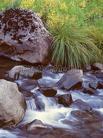 usa oregon john day river rocks