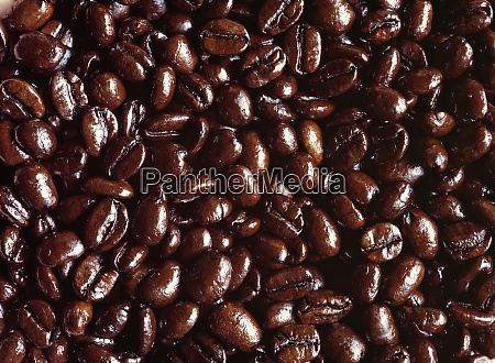 usa oregon bend dark brown coffee