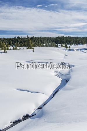 usa wyoming yellowstone national park snowy