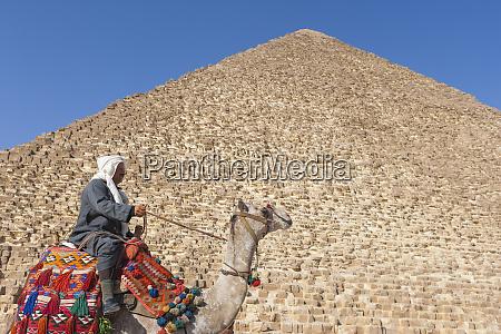 egypt giza egyptian man rides his