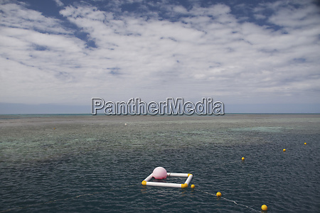 great barrier reef hamilton island queensland