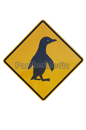 pinguin warnschild neuseeland