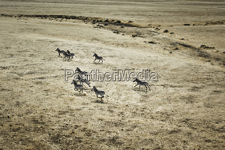 hoarusib valley namibia aerial view of