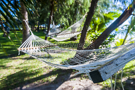 hammock on the beach of the
