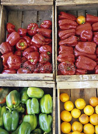 south america uruguay piriapolis vegetables for
