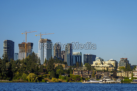 usa washington state bellevue skyline view