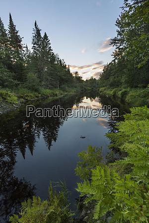 wytipitlock stream reed plantation reed maine