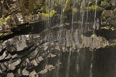 close up narada falls mount rainier