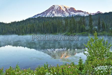 mount rainier reflection mirror lake mount