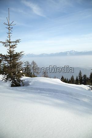 fantastische winterlandschaft sonnenuntergang schneebedeckte baeume