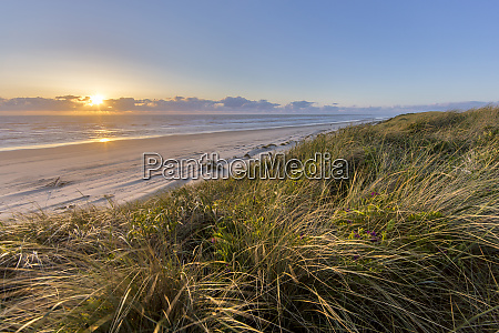 sand dunes and pacific ocean in