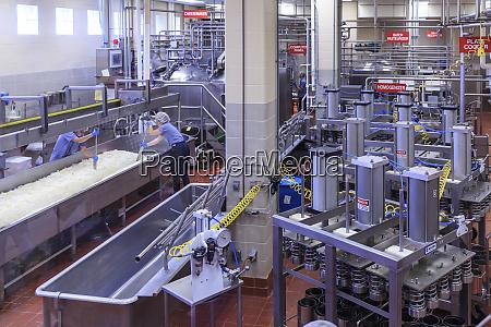 washington state university creamery produzent von