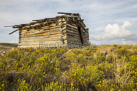 usa wyoming sublette county abandoned cabin