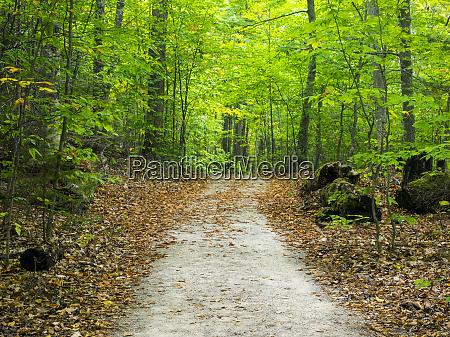 usa upper michigan hiking trail in