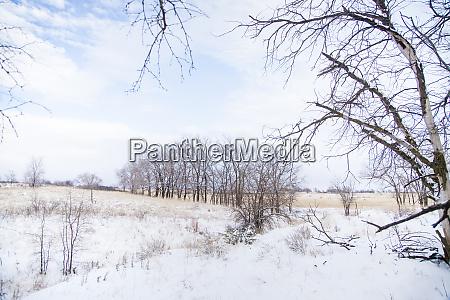 winter on texas ranch