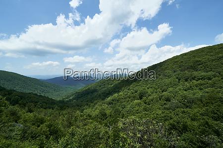 usa georgia chattahoochee national forest the
