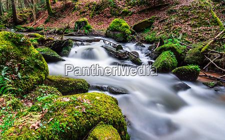 otterbachtal im bayerischen wald