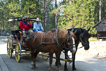 usa california yosemite national park pioneer