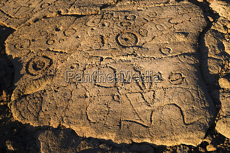 hawaiian petroglyphs on the kings trail