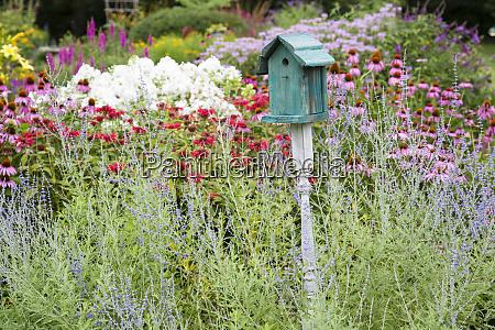 blue birdhouse in flower garden with