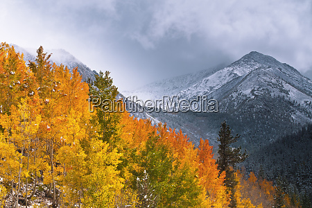 fall color and early snow at