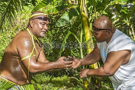 kosrae mikronesien fsm kokosnussschale mit kava