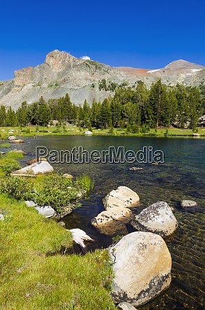 alpine tarn in dana meadows under
