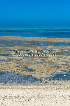 poe beach on the west coast