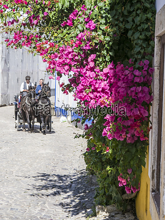portugal obidos horse drawn carriage in