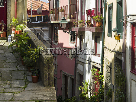 the narrow lanes of the quarter